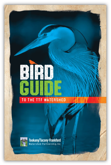 TTF Bird Guide Cover